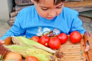 6 dicas para levar ecologia para o dia a dia das crianças