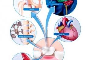A revolução de medicina regenerativa está nos dentes de leite